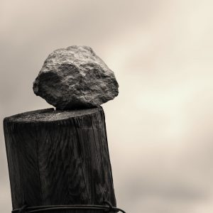 Pedres de vinya (124)
