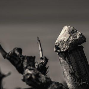 Pedres de vinya